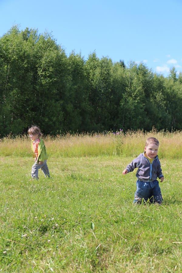 O rapaz pequeno e a menina andam na grama no prado verde imagem de stock royalty free
