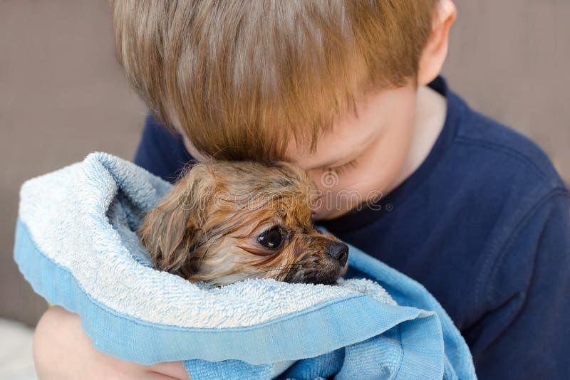 O rapaz pequeno está abraçando com amor um cachorrinho pomeranian do cão molhado fotografia de stock