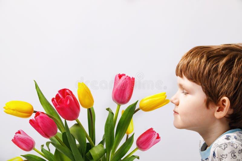 O rapaz pequeno está aspirando uma flor das tulipas imagens de stock