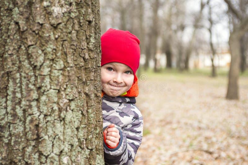 O rapaz pequeno est? jogando o couro cru - e - busca ao ar livre Retrato de um rapaz pequeno bonito que espreita da ?rvore de tr? imagens de stock