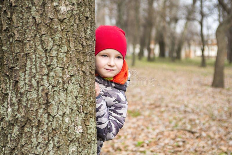 O rapaz pequeno est? jogando o couro cru - e - busca ao ar livre Retrato de um rapaz pequeno bonito que espreita da ?rvore de tr? fotografia de stock