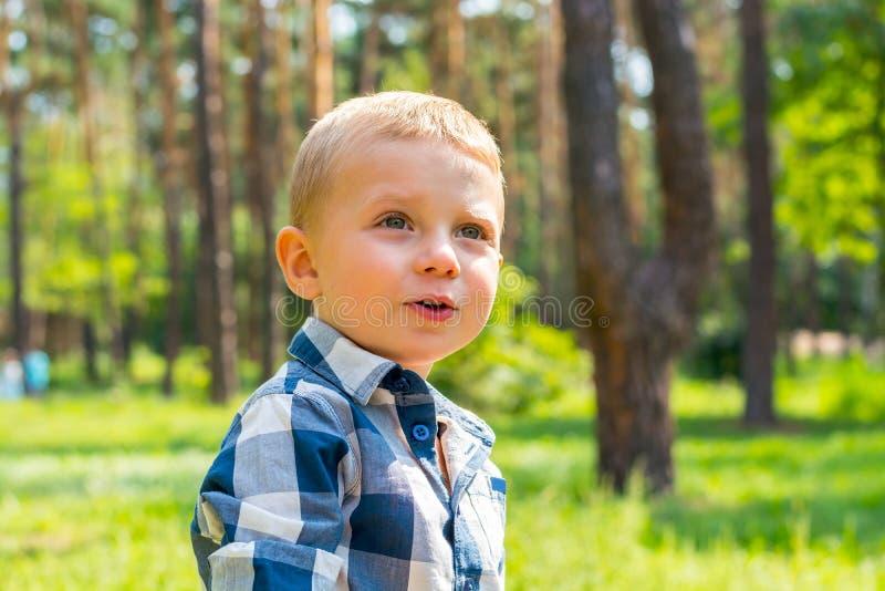 O rapaz pequeno olha acima em algo interessante no parque em uma SU foto de stock royalty free