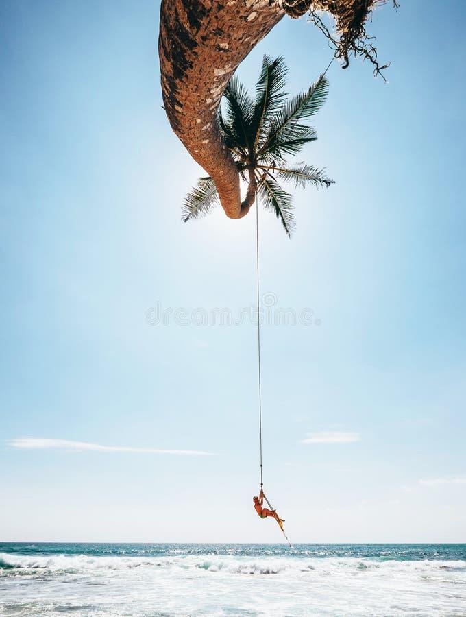 O rapaz pequeno oscila no balanço tropical da palmeira, praia de Sri Lanka fotos de stock