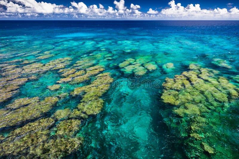 O recife de corais tropical na ilha de Upolu, Samoa, aperfeiçoa para o snorklin imagem de stock royalty free
