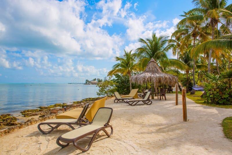 O recurso tropical com chaise longs e redes imagens de stock