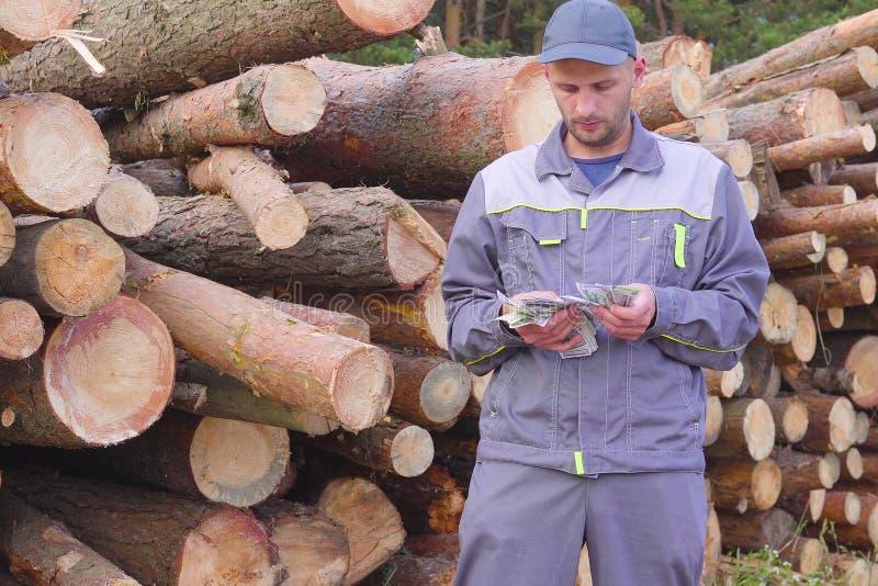 O registador ou o carpinteiro feliz do trabalhador têm o dinheiro grande perto de uma pilha dos logs, madeira vista Conceito do n foto de stock