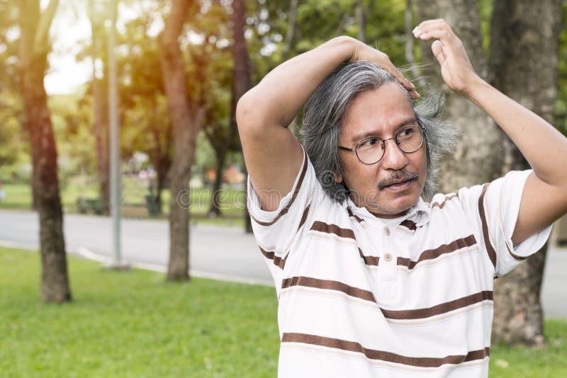 O retrato considerável do meio envelheceu o homem que sorri e que relaxa no parque foto de stock