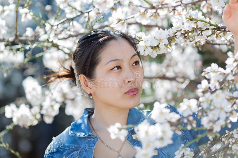 O retrato da jovem mulher asiática entre a amêndoa de florescência ramifica fotografia de stock