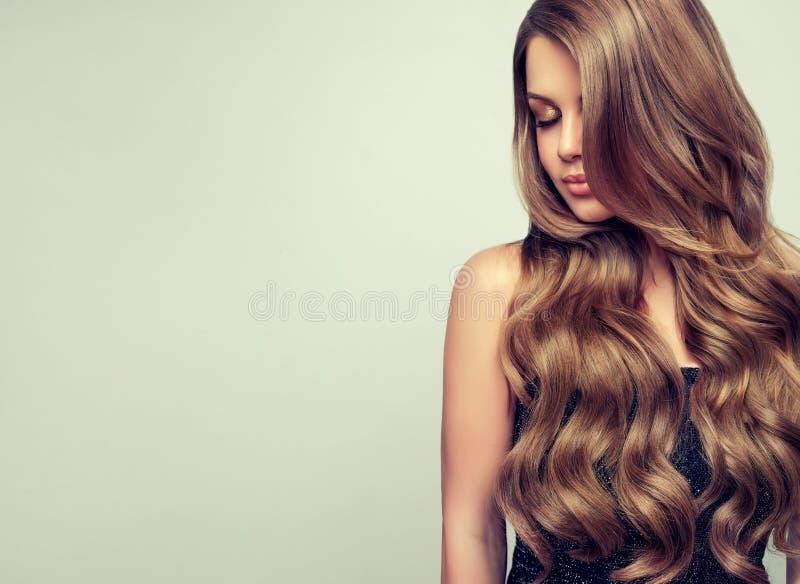 O retrato da jovem mulher lindo com elegante compõe e penteado perfeito imagens de stock