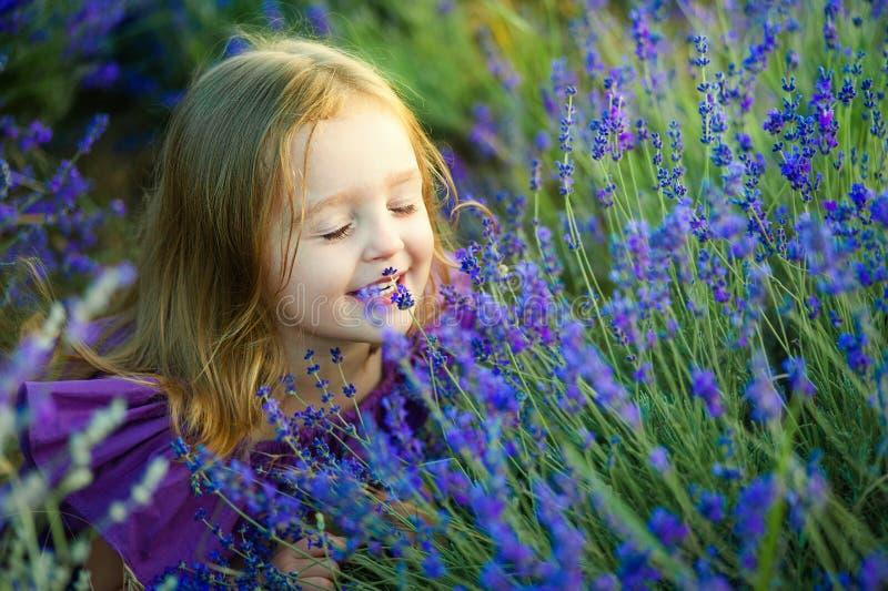 O retrato da menina bonito está descansando em um campo da alfazema fotos de stock