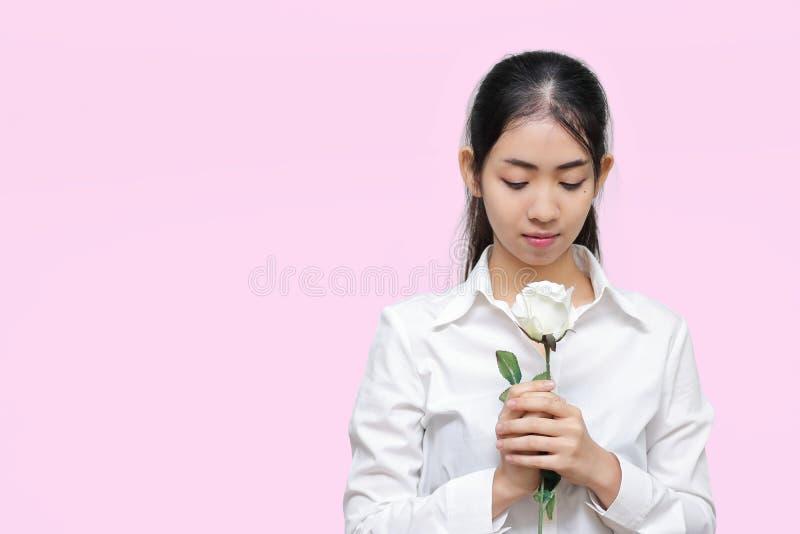 O retrato da mulher asiática nova atrativa que guarda a rosa do branco no rosa isolou o fundo Conceito do dia dos Valentim imagens de stock royalty free