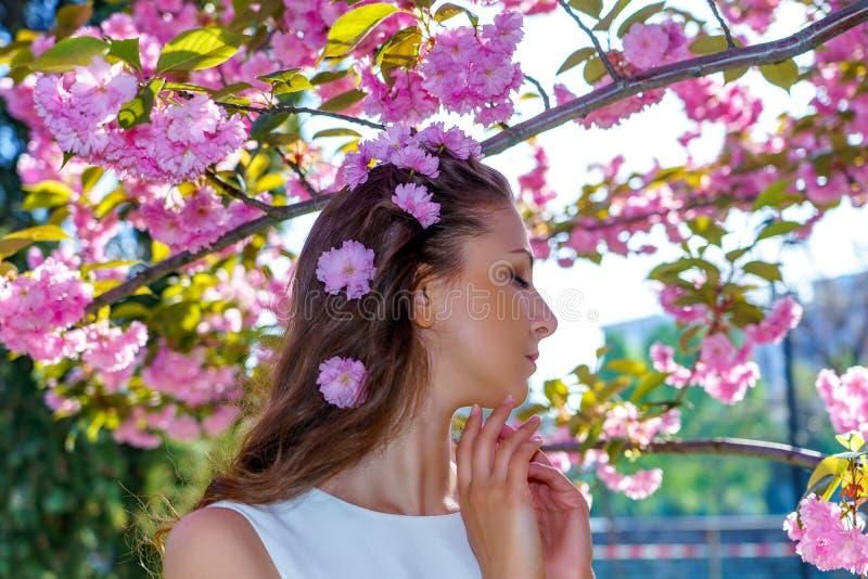 O retrato da mulher atrativa nova com as flores cor-de-rosa em seu cabelo está no vestido branco levanta a proposta na árvore de  fotografia de stock