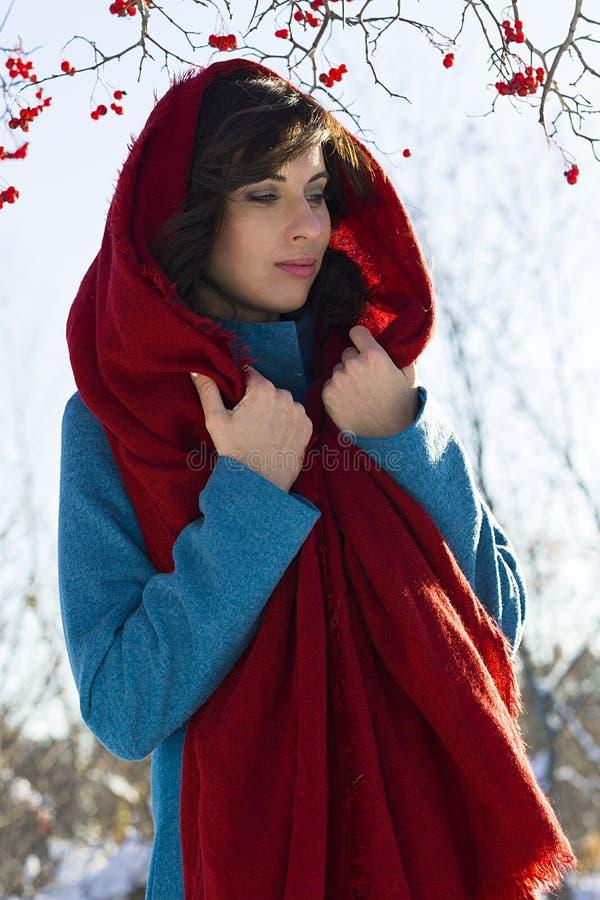 O retrato da mulher moreno nova vestiu-se no lenço vermelho e no revestimento azul sobre o fundo vermelho das bagas foto de stock royalty free
