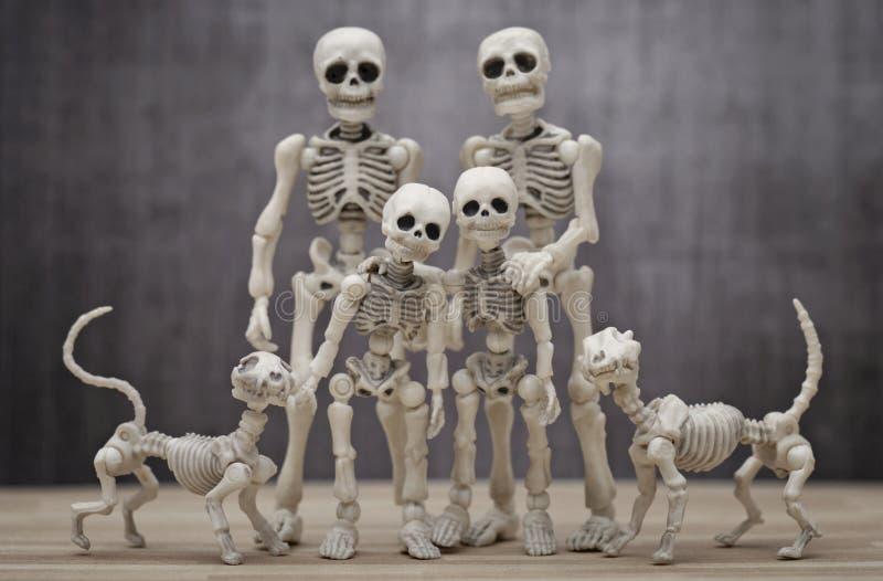O retrato de esqueleto da família imagem de stock