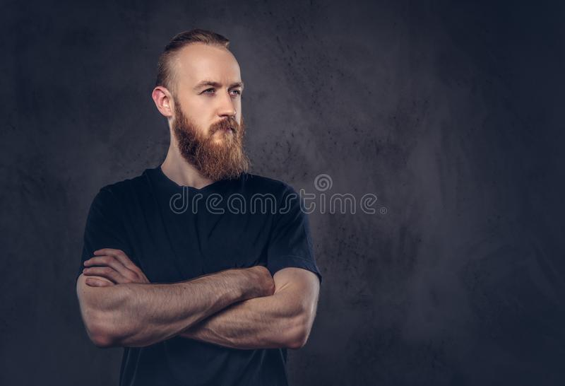O retrato de um homem farpado do ruivo vestiu-se em um t-shirt preto que está com braços cruzados Isolado em um escuro textured fotografia de stock