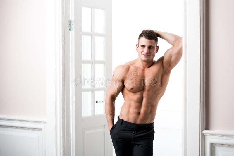 O retrato de um poço construiu o modelo masculino muscular descamisado contra o fundo claro foto de stock royalty free