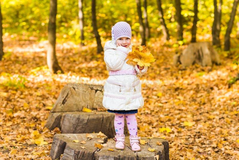 O retrato do bebê pequeno feliz que joga com outono amarelo folheia no fundo natural do parque do ar livre foto de stock