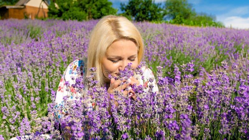 O retrato do close up da alfazema de cheiro da mulher loura nova floresce no campo imagem de stock