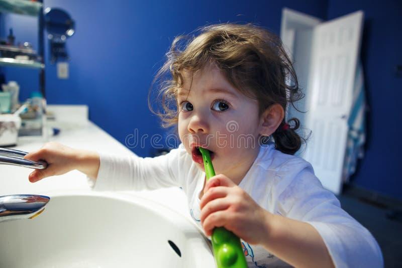 O retrato do close up da menina da criança da criança na cara de lavagem do toalete do banheiro entrega os dentes de escovadela c imagem de stock