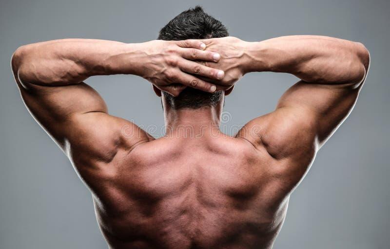 O retrato do close up de um muscular equipa para trás imagens de stock