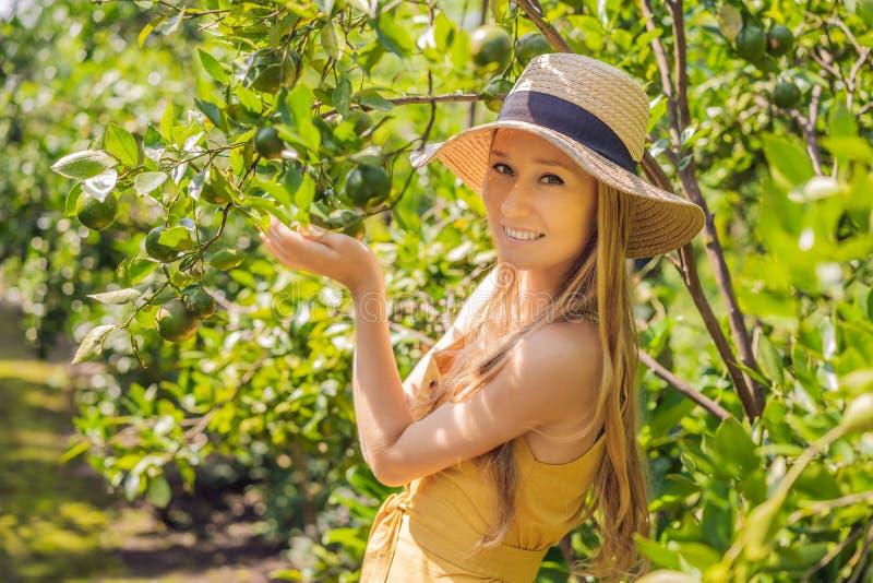 O retrato do fazendeiro atrativo Woman for colher alaranjada na exploração agrícola orgânica, menina alegre na emoção da felicida imagens de stock royalty free