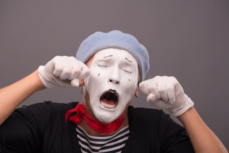 O retrato do homem novo mimica com a cara branca, cinzenta fotografia de stock