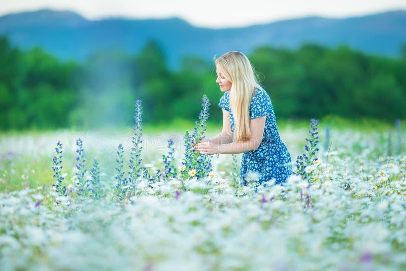 O retrato exterior de um meio bonito envelheceu a mulher loura menina 'sexy' atrativa em um campo com estrados das flores fotografia de stock royalty free
