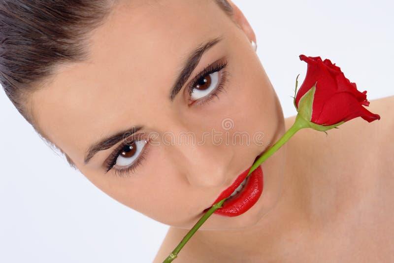 O retrato isolado da beleza com levantou-se imagem de stock