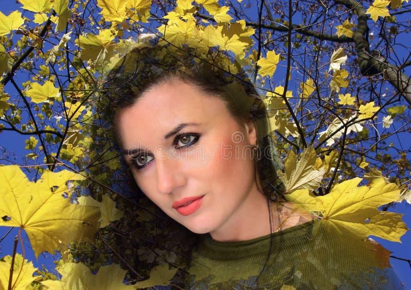 O retrato novo, bonito, mulheres é na perspectiva do céu azul e das folhas de outono amarelas de um bordo imagens de stock