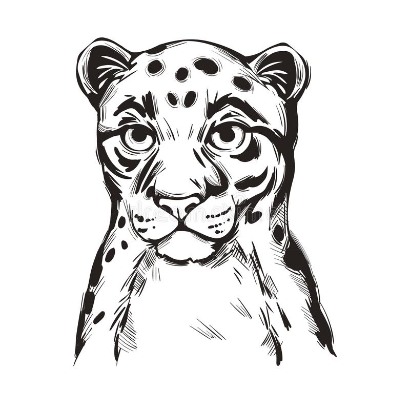 O retrato vetorial do bebê-leopardo-nublado de Sunda fechou a impressão em camiseta isolada, monocromática Neofelis diardi de Fel ilustração stock