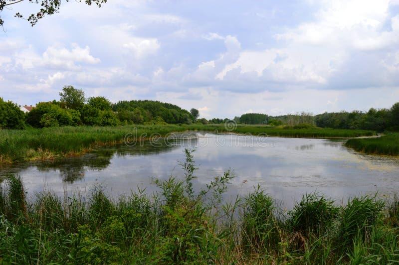 O rio cresceu após chuvas pesadas fotos de stock royalty free