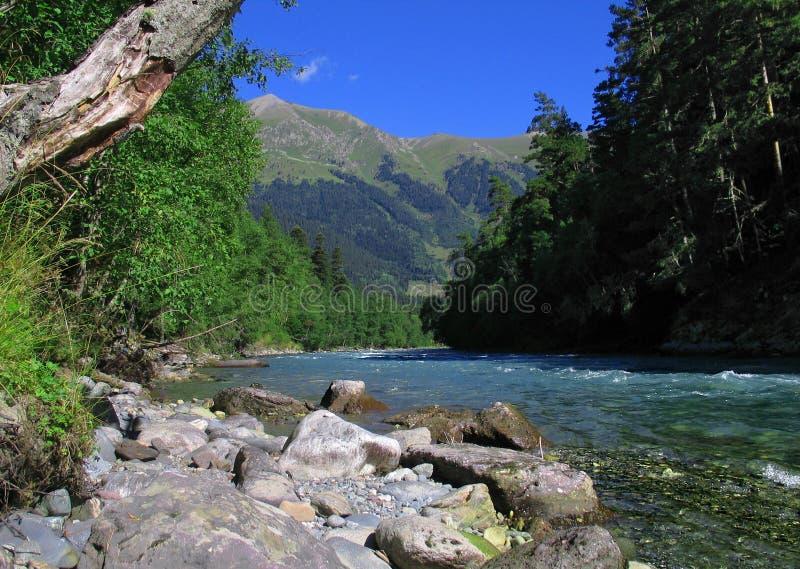 O rio da montanha foto de stock royalty free