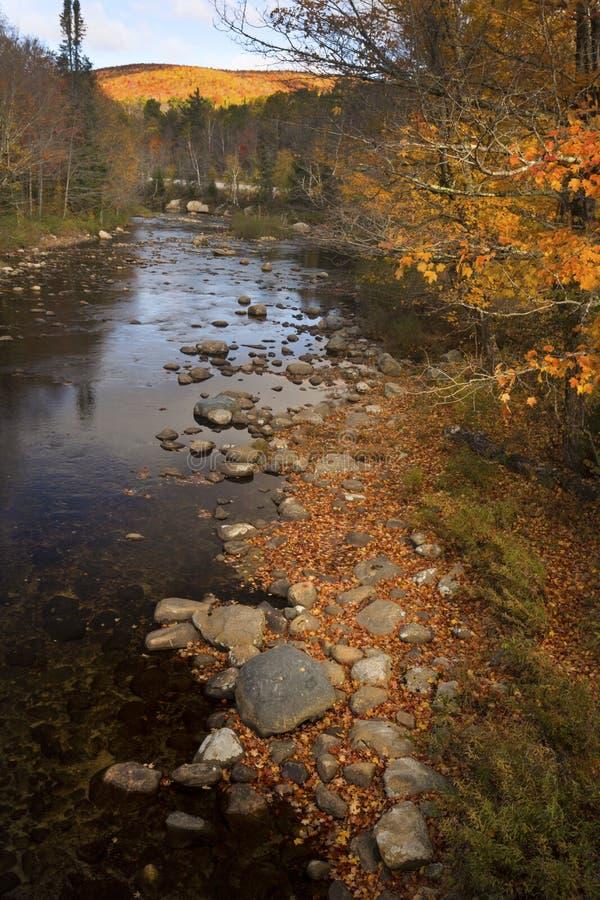 O rio de Ammonusuc corre através das montanhas brancas, Hamps novo fotos de stock