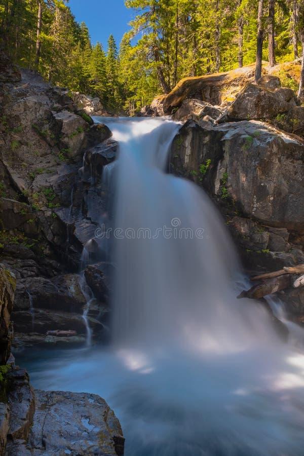 O rio de Ohanapecosh conecta as quedas de prata na montagem Rainier National Park fotografia de stock