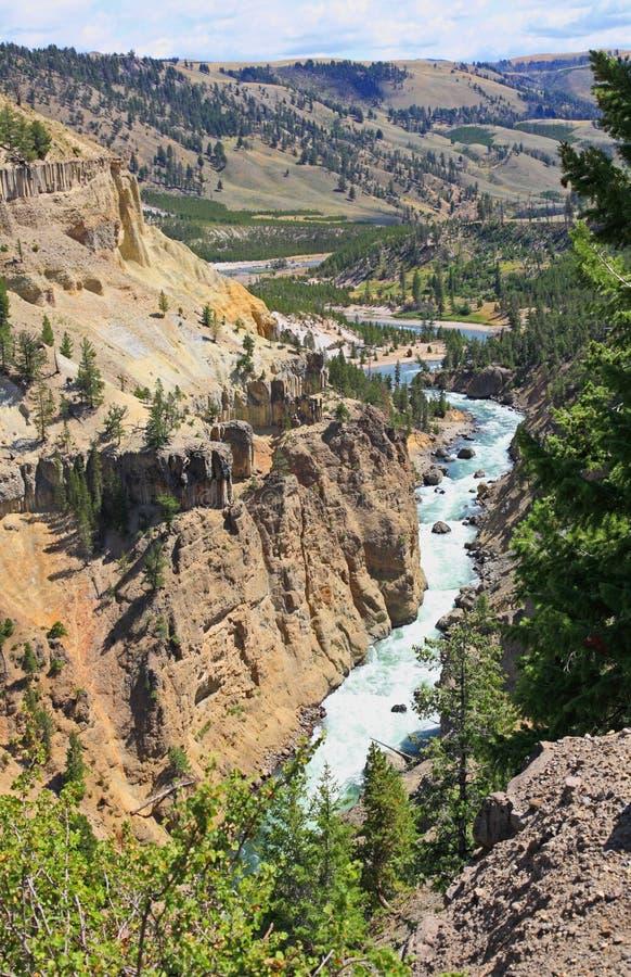 O rio de Yellowstone em Yellowstone NP imagem de stock