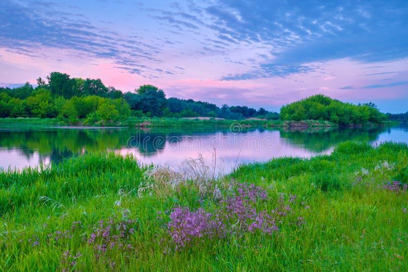 o rio do campo do nascer do sol floresce a luz do sol da paisagem das nuvens do céu foto de stock