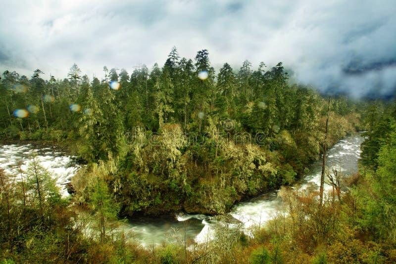 O rio em tibet fotos de stock royalty free