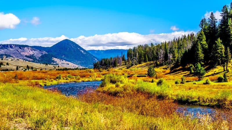 O Rio Gallatin, enquanto atravessa a maior parte ocidental do Parque Nacional de Yellowstone fotos de stock