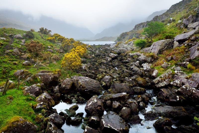 O rio Loe e vento estreito da estrada da passagem de montanha através do vale íngreme de Gap de Dunloe, Kerry do condado, Irlanda imagens de stock royalty free