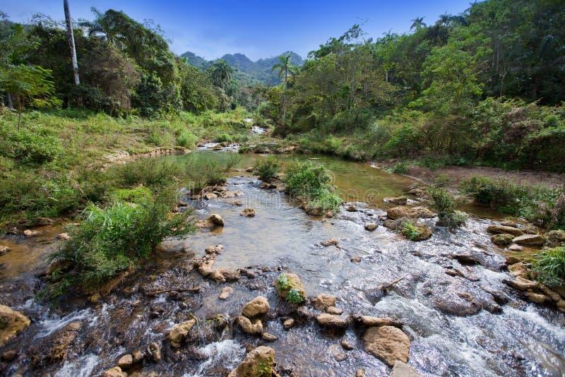 O rio no parque Soroa cuba fotos de stock royalty free