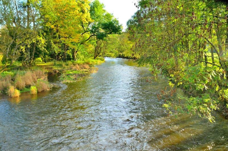 O rio Ourthe no Ardennes belga no outono imagem de stock