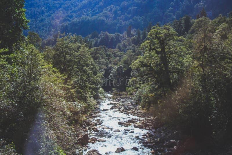 O rio pequeno corre através da passagem de Wilmot no som duvidoso - parque nacional de Fiordland, ilha sul, Nova Zelândia foto de stock