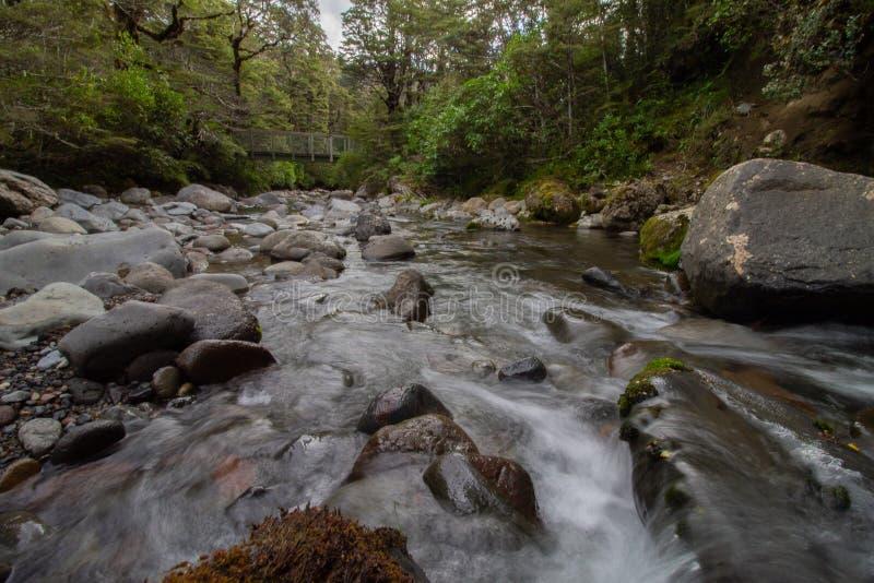 O rio selvagem flui sob uma ponte em Tongariro Forrest Park New-Zealand fotografia de stock