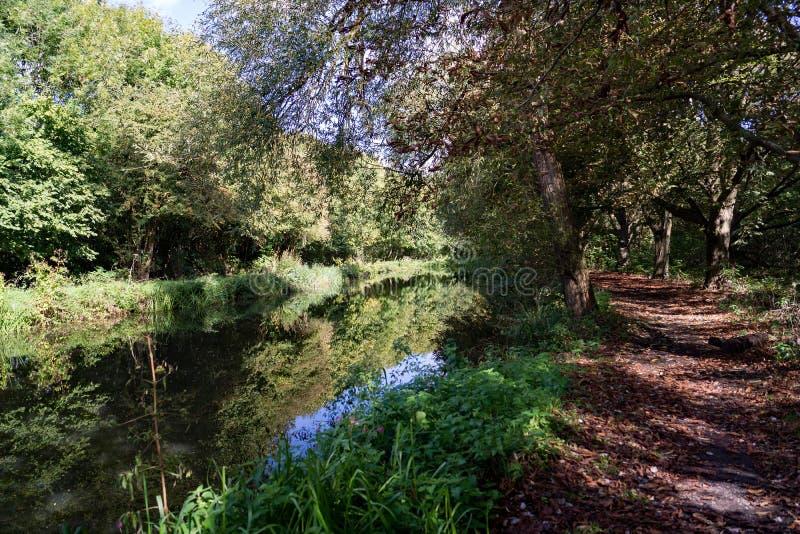 O rio Stort Harlow correndo através em Essex imagem de stock royalty free
