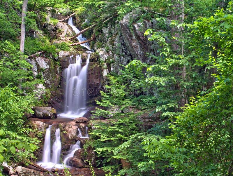 O rio superior de Doyles cai no parque nacional de Shenandoah imagens de stock