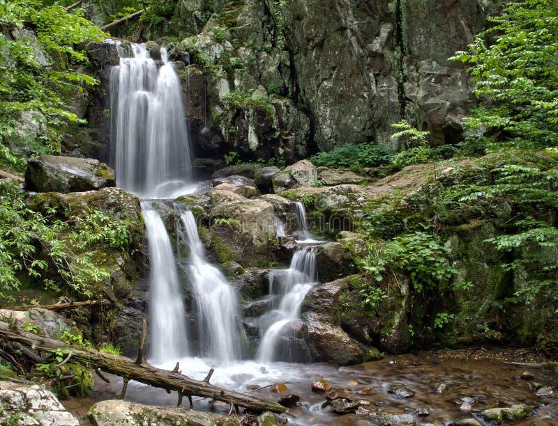 O rio superior de Doyles cai no parque nacional de Shenandoah fotos de stock