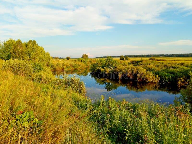 O rio Uvelka no distrito do etkul da região de Chelyabinsk A vista da costa imagem de stock