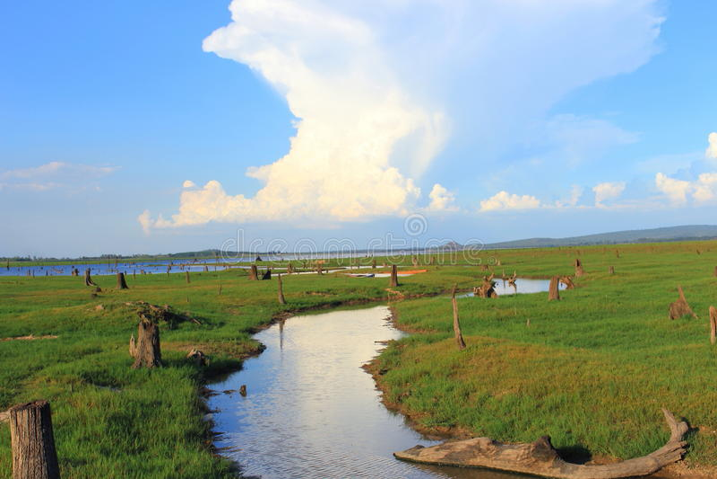 O rio vai ao lago sob o cúmulo-nimbo fotografia de stock royalty free