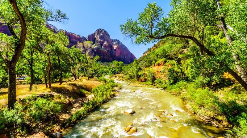 O rio Virgin em Zion Canyon do Zion National Park em Utah, Estados Unidos imagens de stock