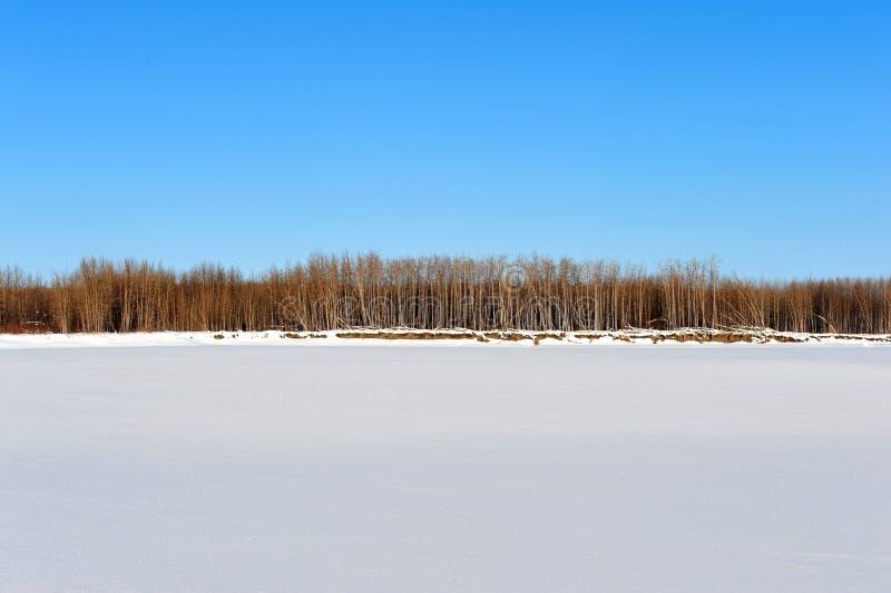 O Rio Yukon congelado coberto pela neve fotografia de stock